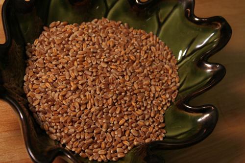 Wheat Berry Breakfast Bowl | Put a spork in it.