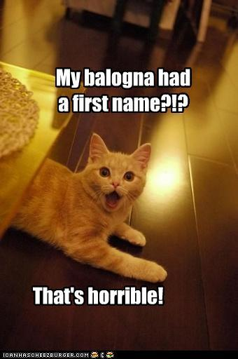 my-balogna-had-a-first-name